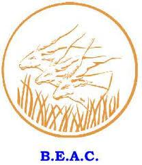 L'allemand Giesecke & Devrient désigné pour la destruction et le briquetage des billets à la BEAC