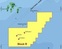 Guinée Equatoriale : Ophir et OneLNG constituent une JOC pour développer le projet FNLG