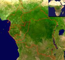 12 pays africains s'engagent pour la création d'un fonds bleu pour le bassin du Congo