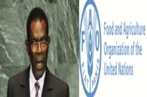 OBIANG NGUEMA  MBAZOGO : Un visionnaire qui mise gros pour l'agriculture