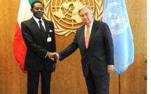 Opposition Equato- Guinéenne : Une vie de mensonges , et des preuves irréfutables de leur intox !