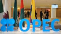 Les pays pétroliers africains soutiennent les efforts de l'OPEP