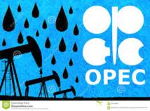 """L'Opep parvient à un accord """"historique"""" pour limiter sa production"""