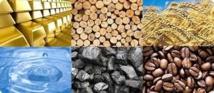 Plus de la moitié des pays en développement dépendants des matières premières sont africains (CNUCED)