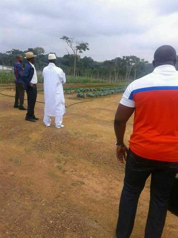 Guinée Équatoriale/Gambie : Le Président Obiang Nguema Mbasogo a évité le bain de sang en Gambie !