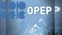 En avril, la production pétrolière de l'OPEP a chuté à un niveau record