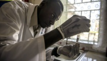 Afrique: La recherche scientifique en voie de disparition dans le continent