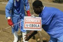Ebola: portrait d'un virus tueur