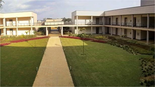 Suggestions du Conseil des Universitaires et Experts Panafricains pour la structuration de l'Université de Djibloho en Grandes Ecoles