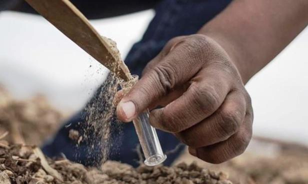 Fernandino Eloko, le promoteur du Bio en Guinée équatoriale