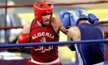 Boxe arabe : la Guinée équatoriale abritera le championnat africain