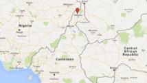 Cameroun: au moins 20 morts dans un attentat-suicide