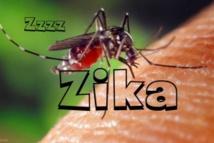 Guinée Equatoriale : Le Gouvernement prend des mesures contre le virus ZIKA !!!