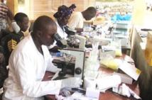 Cemac : la Banque allemande de développement injecte près de 7 milliards de FCFA dans la lutte contre les maladies tropicales