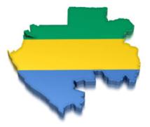 Gabon : Ces curiosités de la liste électorale qui font douter de sa fiabilité
