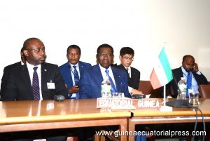 La Guinée Equatoriale au Sommet Japon/pays africains membres Non-permanents du Conseil de Sécurité de l'ONU