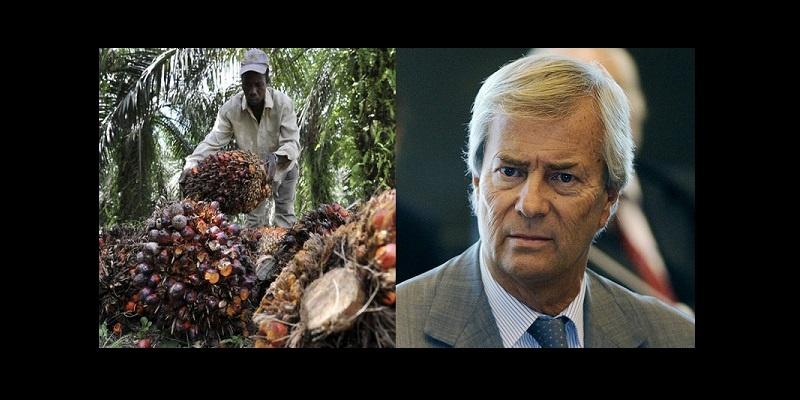 La presse française farouchement opposée aux méthodes de Bolloré l'Africain