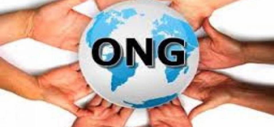 Exclusivité : Le vrai visage des ONG occidentales qui opèrent en Afrique ?