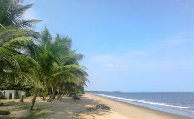RUMBO MALABO, un nouvel acteur fait irruption dans le marché touristique de la Guinée équatoriale.