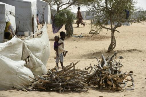 Boko Haram: un attentat-suicide frappe le Cameroun, après le Tchad