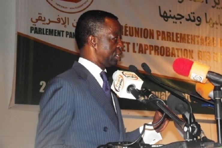 Electrification et climat: le président du parlement panafricain le 3 novembre devant l'Assemblée nationale