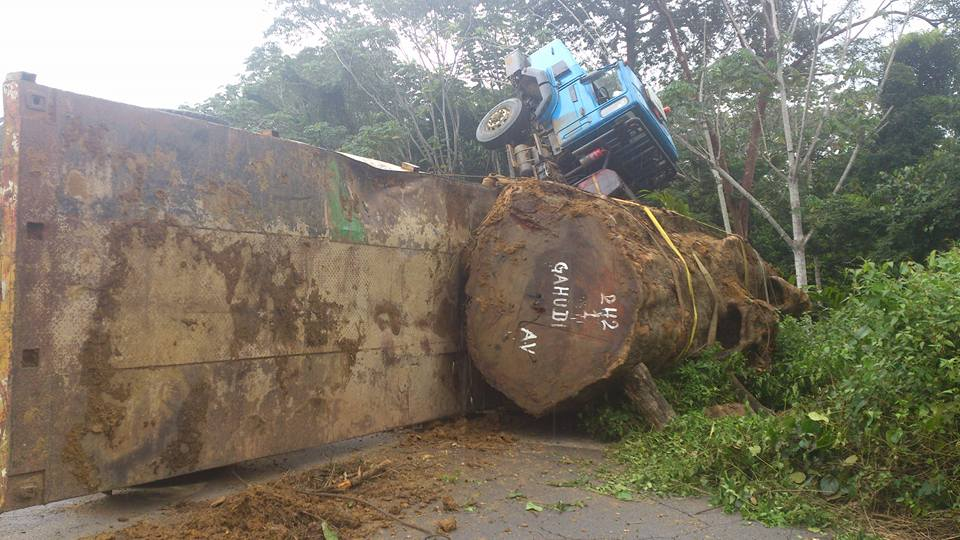 Gabon :  Entre nécessité de dévéloppement, pillages et préservation de l'environnement