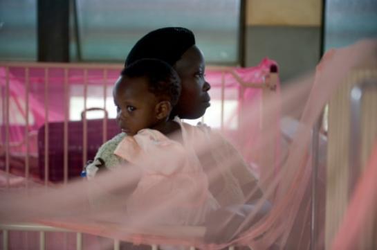 Paludisme: une thérapie réduit la gravité chez les femmes enceintes