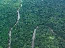 La CEEAC compte sur le Maroc, hôte de la COP 22, pour défendre la cause du Bassin du Congo