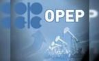 OPEP : Après la Guinée Equatoriale la République du Congo à son tour veut rejoindre l'Organisation