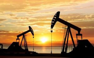 Ouverture à Malabo du deuxième séminaire international du Forum des pays exportateurs de gaz naturel (FPEG)