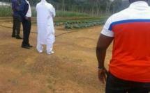 Sacrée reconversion d'un ancien Chef d'Etat  : Yahya Jammeh en toute humilité décide de cultiver la terre dans son pays d'accueil !