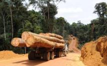 Afrique Centrale : Perte de 150 milliards de FCFA de recettes fiscales des pays du bassin du Congo