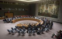 Conseil de sécurité de l'Onu : Les six nouveaux membres non permanents siégent à compter de ce 1er janvier 2018
