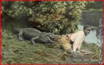 Torture des Esclaves : quand les enfants noirs servaient d'appât pour alligators