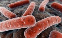 Les chargés de suivi et évaluation de onze programmes nationaux de lutte contre la Tuberculose d'Afrique centrale en atelier à Kinshasa