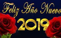 BONNE ANNEE 2019 ! FELIZ AÑO NUEVO 2019 ! BONNE ANNEE 2019 ! FELIZ AÑO NUEVO 2019 !