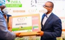 Covid-19 : la Guinée équatoriale reçoit de Madagascar plus de 10 tonnes de Covid-Organics ( vidéo)