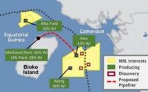 Guinée équatoriale : Malgré la Covid-19, le champ gazier d'Alen entrera en service en 2021